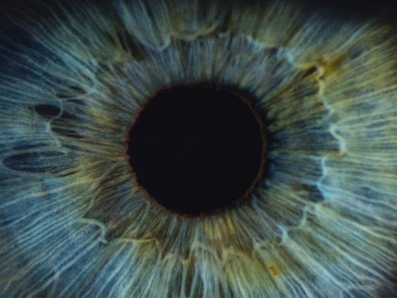Arechina działa toksycznie na narząd wzroku (canva.com)