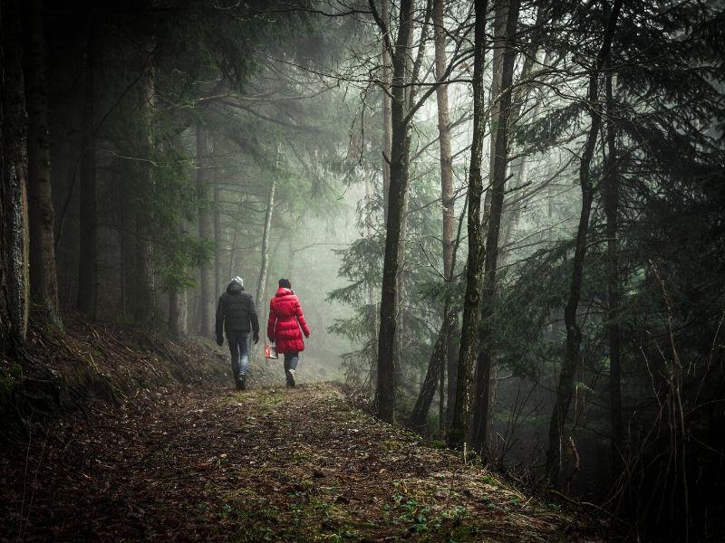 Najlepszy spacery to te daleko od miasta i w lesie (fot. canva.com)